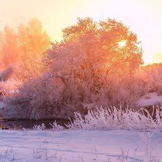 Good morning. Svisloch river in frosty morning. Minsk. Belarus.