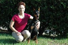 Dr. Haug explores a few of the myths and the facts about dog training methods.