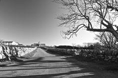 Iona Shadows. Iona, Scotland.