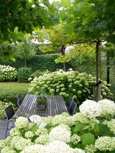 Garden design isn't only about earning your garden more attractive, but is also . Garden design isn't only about earning your garden more attractive, but is also essential in making it more functional. A little garden design differs. Small Garden Design, Backyard Landscaping, Amazing Gardens, Diy Garden, Outdoor Gardens, White Gardens, Garden Planning, Cottage Garden, Shade Garden