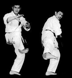 Kansetsu geri Martial Arts, Kicks, Fictional Characters, Combat Sport, Fantasy Characters, Martial Art