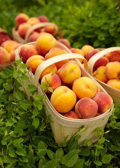 Have to remember to make a mini road trip to Georgia to pick fresh peaches next year!!!