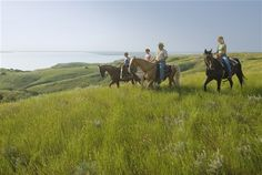 Horses are welcome in South Dakota with trail rides, horse camps, guest ranches, and many state parks offering facilities for riders.