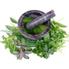 Bylinky a koření jak je známe a neznáme (část 1.) Koření a bylinky jsou již dlouho používány nejen k léčebným účelům, ale taky k dochucení pokrmů. Odkud pocházejí a jak je správně používat se dozvíte v toto článku.