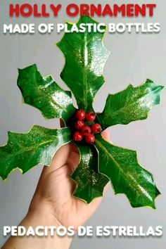 Holly from plastic bottles. Diy Christmas Decorations For Home, Diy Christmas Lights, Christmas Ornaments To Make, How To Make Ornaments, Christmas Projects, Christmas Diy, Reuse Plastic Bottles, Plastic Bottle Flowers, Plastic Bottle Crafts