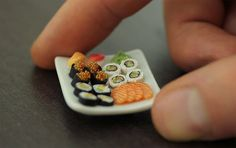 Sushi Platter - 1:12 | by Shay Aaron