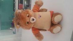Interactive Talking Teddy Ruxpin Bear   eBay