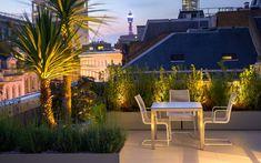 #roof #terrace #landscaping #rooftop #landscape #design #ideas Mylandscapes Garden Design, Covent Garden rooftop, photo Marianne Majerus