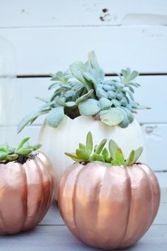 Do the best Haloween home decoration with the Best Pumpkin Carving ideas. Get the best Ideas for carving your Pumpkin here for Halloween Cute Pumpkin, Diy Pumpkin, Pumpkin Carving, Carving Pumpkins, Halloween Pumpkins, Halloween Decorations, Peacock Halloween, Unicorn Pumpkin, Pumpkin Planter