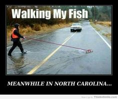 Meanwhile in North Carolina