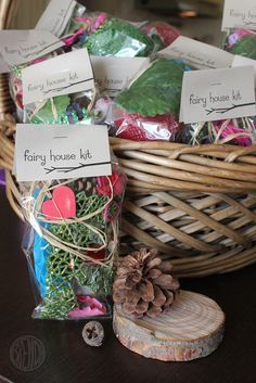 Fairy House Kit. How fun to add to the painting fairy house activity.