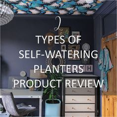 2-types-self-watering-planters-lechuza-pon-product-review Pink Wallpaper Bedroom, Wallpaper Ceiling, How To Hang Wallpaper, Wallpaper Ideas, Blue And Pink Bedroom, Green Lounge, Dark Blue Living Room, Dark Blue Green, Self Watering Planter