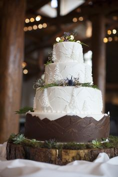 Outdoorsy Mountain Wedding Cake                                                                                                                                                                                 More