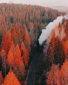 Beautiful Nature Pictures, Beautiful Nature Scenes, Nature Photos, Amazing Nature, Beautiful Places, Romantic Kiss Video, Autumn Scenery, Photo Wall Collage, Live Wallpapers