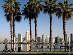 San Diego, California. How lucky am I to live here?