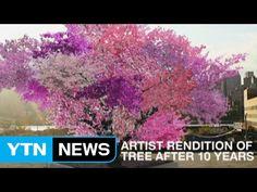 40가지 과일이 주렁주렁 열리는 '신기한 나무' / YTN - YouTube
