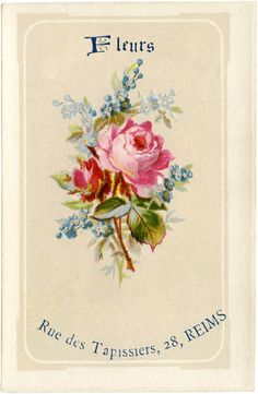 Lovely French Fleurs Image - The Graphics Fairy