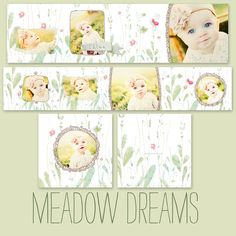 Meadow Dreams 3x3 Whcc Accordion Album