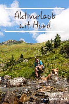Du gehst gerne wandern, liebst es mit dem Rad zu fahren oder Golf zu spielen, möchtest deinen Hund aber immer bei dir haben? Dann ist Kärnten das perfekte Reiseziel für dich und deinen Vierbeiner! Von weiten Wanderungen, bis zu schönen Radrundfahrten ist für jeden etwas dabei. Golf, Mountains, Nature, Travel, Bicycling, Playing Games, Travel Advice, Hiking, Destinations