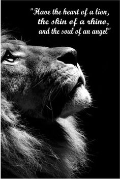Have the heart of a lion, the skin of a rhino, and the soul of an angel More