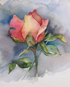 My little rose Iris Painting, Watercolor Painting Techniques, Watercolor Projects, Watercolor Paintings, Watercolors, Watercolor Rose, Watercolor Cards, Watercolor Illustration, Watercolor Pictures