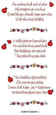 Ladybug, best wishes