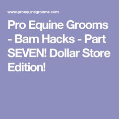 Pro Equine Grooms - Barn Hacks - Part SEVEN! Dollar Store Edition!
