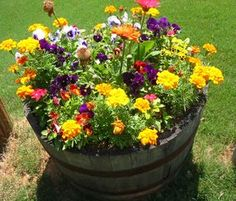 Flower Barrel with pansy | Garden Language of Flowers