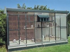 Image result for Pigeon Lofts Coops Plans