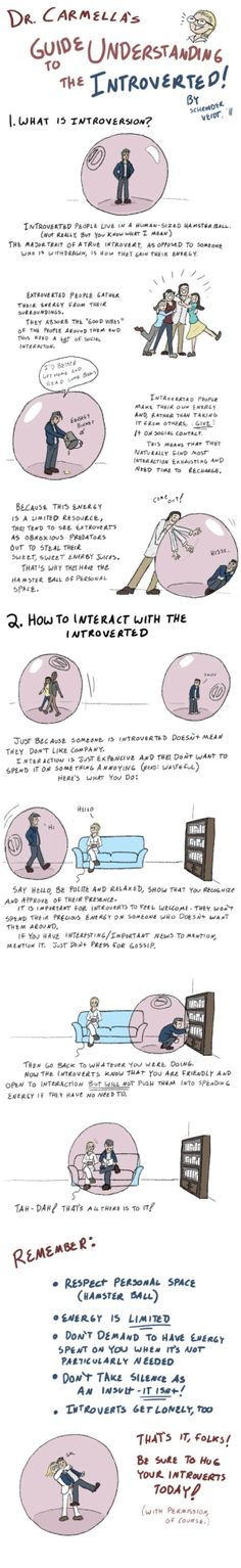Care for your introvert.  Good TED talks about introverts here too.