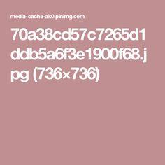 70a38cd57c7265d1ddb5a6f3e1900f68.jpg (736×736)