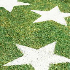 Great activity idea-- Lawn Stars!