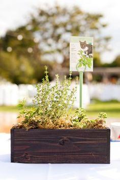 offbeat-diy-spring-inspired-california-wedding9