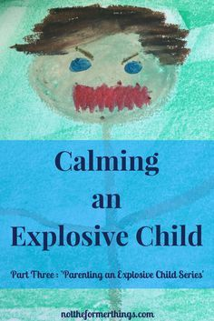 Calming An Explosive Child - ADHD, Autism, ODD, Anxiety Disorder Not The Former Things