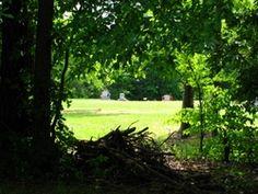 New Bethel Memorial Gardens  Durham  Durham County  North Carolina  USA