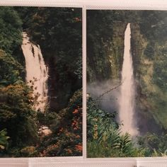 Akaka Falls on the big island, Hawaii. Between Two Worlds, Around The Worlds, Twilight, Big Island Hawaii, Plein Air, My New Room, Looks Cool, Pretty Pictures, Summer Vibes