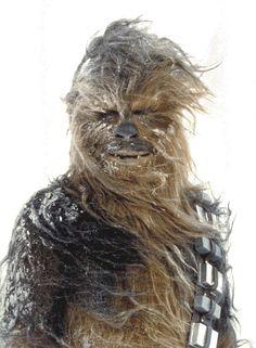 Chewbacca. (AKA) Fuzz Ball