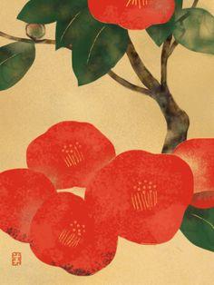 Hidetoshi Mito _ Camellia, Ochi-tsubaki