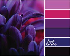Синий, красный, фиолетовый