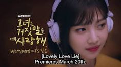 Lovely Love Lie (The Liar and His Lover)