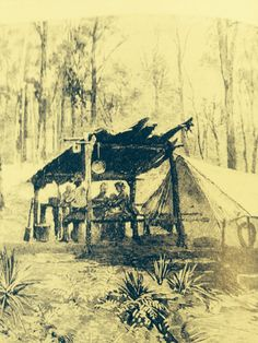 tent brought from England,bark lean to of local materials. From Pioneer Women by Susanna De Vries. Pioneer Clothing, Wattle And Daub, First Fleet, El Dorado County, Pioneer Women, Historical Pictures, Matilda, Genealogy, Cottages
