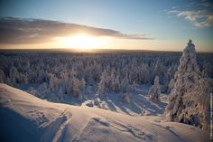 View from the top of Ounasvaara fell in Rovaniemi. January 2013.