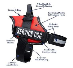 Interchangeable Patches Heavy Duty Vests for Working or in Training Dogs Emotional Support Dog Vest Harness with Reflective Straps ESA Dog Vest in 7 Adjustable Sizes and Matching ESA Leash Set
