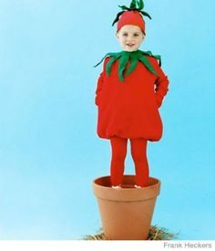 Tomato Costume - sweatshirt with tights or leggings, add green accents with fabric glue