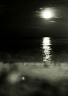 Where Water and Earth Caress | Full moon over the Chesapeake Bay by Rebecca Sherman