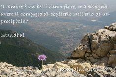 L'amore è un fiore