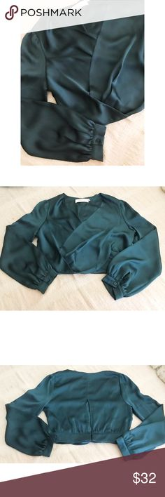 """ASTR Satin Faux Wrap Top Date nights call for something a bit more alluring and his silky faux wrap top in a cropped length is sure to make a statement.  ★ 19.5"""" length ★ 17"""" bust  ★ 17"""" Sleeve ★ 100% polyester Astr Tops Crop Tops"""