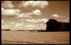 Kociewskie pola | zoom | digart.pl