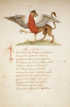 The Griffin. Creature with lower part of a lion and the upper part of an eagle, with outspread wings and one leg raised. (MS. Auct. F. 4. 15)