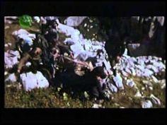 Tempo: Além dos Limites Humanos - Documentário (2006)